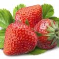 Manfaat Strawberry Untuk Kesehatan Dan Kecantikan